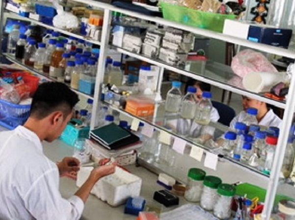 Nghiên cứu natto rutin làm thuốc điều trị tai biến mạch máu não tại Viện Công nghệ Sinh học, Viện Hàn lâm KH-CN Việt Nam.