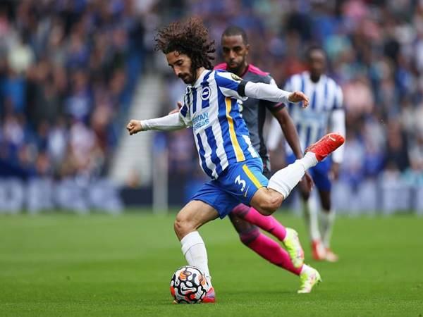 Nhận định trận đấu Brighton vs Swansea (1h30 ngày 23/9)